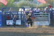 Marysville Stampede 2017 Day 2 1282.jpg