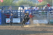 Marysville Stampede 2017 Day 2 1285.jpg