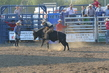 Marysville Stampede 2017 Day 2 1289.jpg