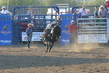 Marysville Stampede 2017 Day 2 1292.jpg
