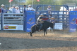 Marysville Stampede 2017 Day 2 1306.jpg