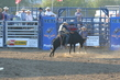 Marysville Stampede 2017 Day 2 1307.jpg