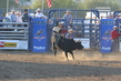 Marysville Stampede 2017 Day 2 1313.jpg