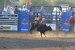 Marysville Stampede 2017 Day 2 1314.jpg