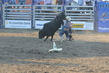 Marysville Stampede 2017 Day 2 1345.jpg