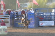 Marysville Stampede 2017 Day 2 1368.jpg