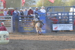 Marysville Stampede 2017 Day 2 1373.jpg