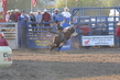 Marysville Stampede 2017 Day 2 1375.jpg