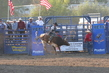 Marysville Stampede 2017 Day 2 1384.jpg
