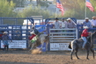 Marysville Stampede 2017 Day 2 1408.jpg