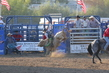 Marysville Stampede 2017 Day 2 1410.jpg
