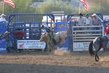 Marysville Stampede 2017 Day 2 1411.jpg