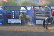 Marysville Stampede 2017 Day 2 1412.jpg