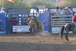Marysville Stampede 2017 Day 2 1413.jpg