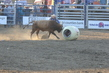 Marysville Stampede 2017 Day 2 1500.jpg