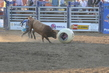 Marysville Stampede 2017 Day 2 1501.jpg