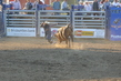 Marysville Stampede 2017 Day 2 1503.jpg