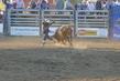 Marysville Stampede 2017 Day 2 1504.jpg