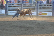 Marysville Stampede 2017 Day 2 1507.jpg