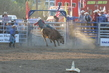 Marysville Stampede 2017 Day 2 1537.jpg