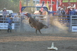 Marysville Stampede 2017 Day 2 1538.jpg