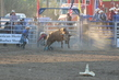 Marysville Stampede 2017 Day 2 1541.jpg