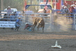Marysville Stampede 2017 Day 2 1542.jpg