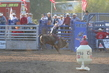 Marysville Stampede 2017 Day 2 1560.jpg