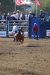 Marysville Stampede 2017 Day 2 184.jpg
