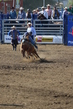 Marysville Stampede 2017 Day 2 187.jpg