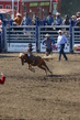 Marysville Stampede 2017 Day 2 189.jpg