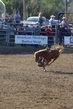Marysville Stampede 2017 Day 2 194.jpg