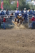 Marysville Stampede 2017 Day 2 202.jpg