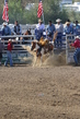Marysville Stampede 2017 Day 2 203.jpg