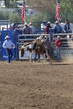 Marysville Stampede 2017 Day 2 210.jpg