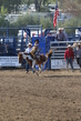 Marysville Stampede 2017 Day 2 212.jpg