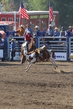 Marysville Stampede 2017 Day 2 219.jpg