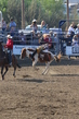 Marysville Stampede 2017 Day 2 223.jpg