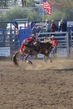 Marysville Stampede 2017 Day 2 729.jpg