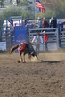 Marysville Stampede 2017 Day 2 732.jpg