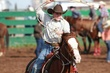 Lincoln HS Rodeo 20130113 007.jpg
