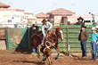 Lincoln HS Rodeo 20130113 012.jpg