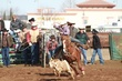 Lincoln HS Rodeo 20130113 017.jpg