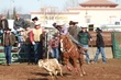 Lincoln HS Rodeo 20130113 018.jpg