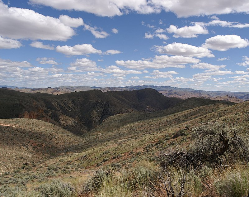 Juniper Ridge.jpg :: KONICA MINOLTA DIGITAL CAMERA