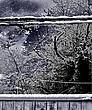 winter 2012-2.jpg