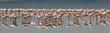 Greater Flamingo panorama.jpg