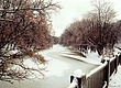 19990124-01-04-Winton Woods.jpg