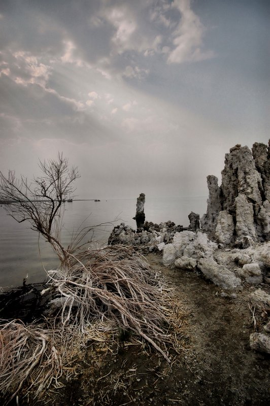 Mono Lake 7.jpg ::  Tufa is a variety of limestone formed when carbonate minerals precipitate out of ambient temperature water.
