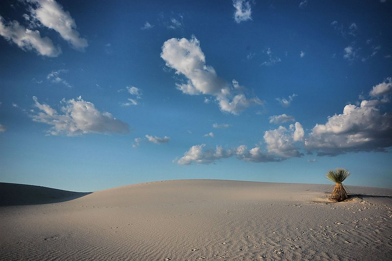 WS-3.jpg :: Rising from the Tularosa Basin at the northern end of the Chihuahuan Desert lies  one of the natural wonders of the world. The White Sands of New Mexico.